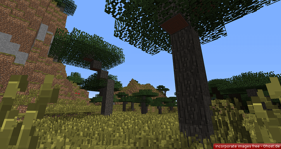 Traditional Beauty Texture Pack Image 3