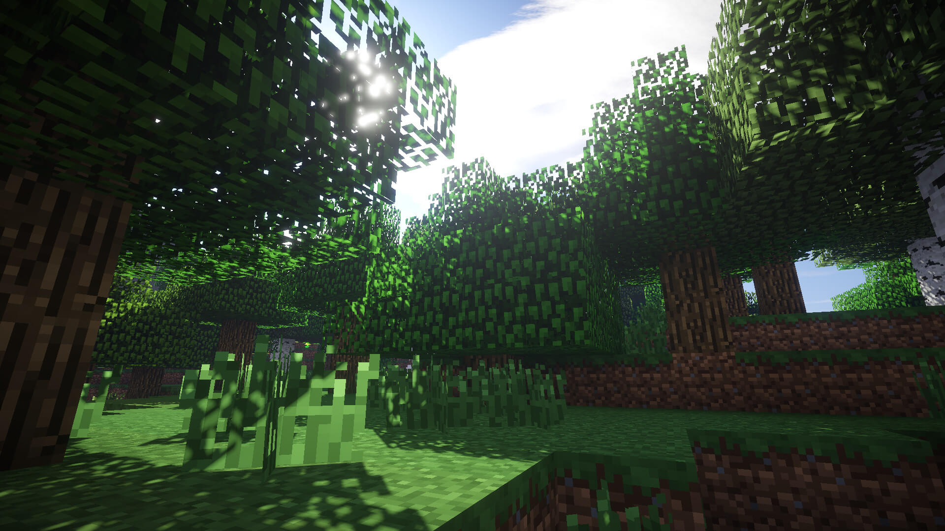 Sonic Ether's Unbelievable Shaders Shader Image 1