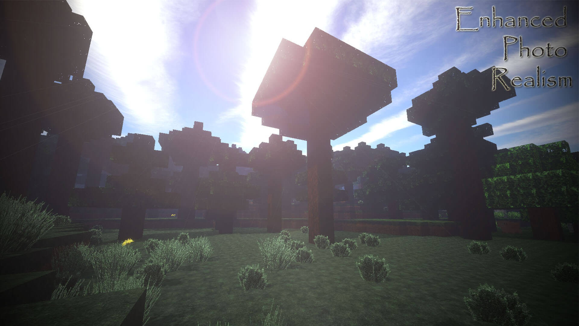 LB Photo Realism Texture Pack Image 5